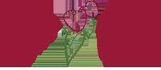 Lychee Divine | Lychee Hill Estate | Tomarata Logo